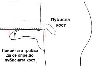 Публикувано изображение