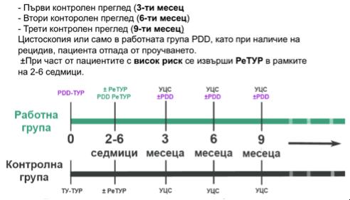 rak-na-pikochniq-mehur-1